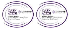 CASN Accredited BSCN