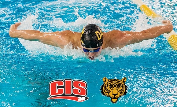 Believing They Belong Tigers Swim Teams Hit The National Stage Dal News Dalhousie University
